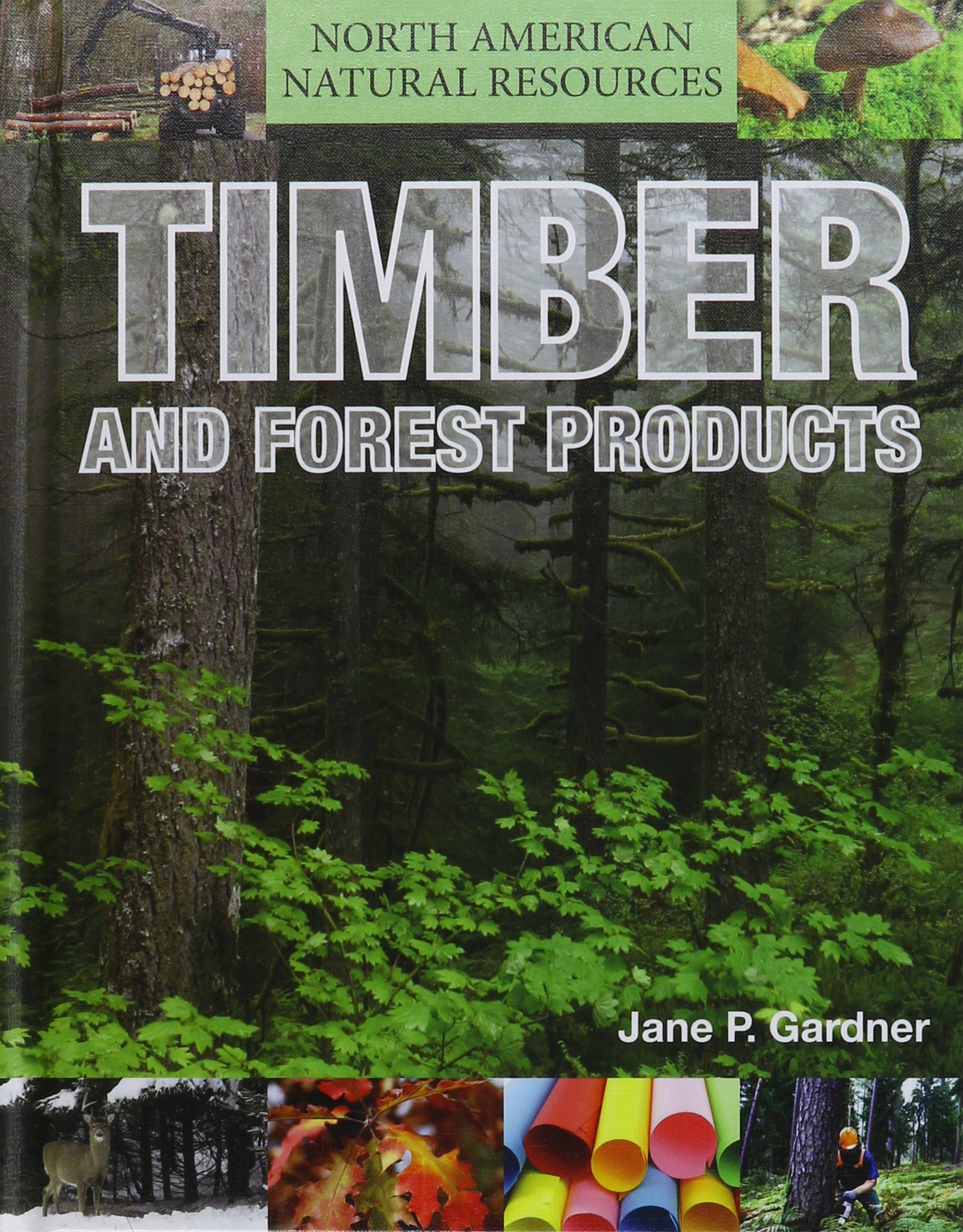 Download Timber and Forest Products (North American Natural Resources) pdf