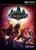 Pillars of Eternity: Hero Edition [PC Code - Steam]