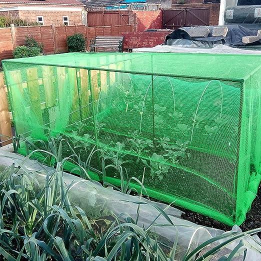 Jaula protectora para fruta y verdura - Incluye malla de color verde: Amazon.es: Jardín