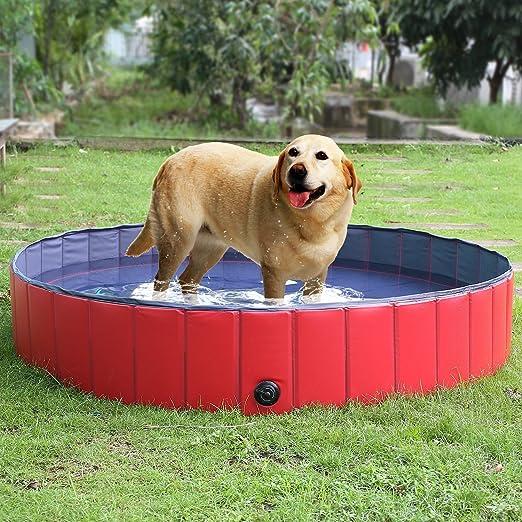 BLUE CHARM Piscina Plegable del Perro - Piscina Plegable portátil del Kiddie de la Tina de baño del Animal doméstico del PVC para al Aire Libre: Amazon.es: Productos para mascotas