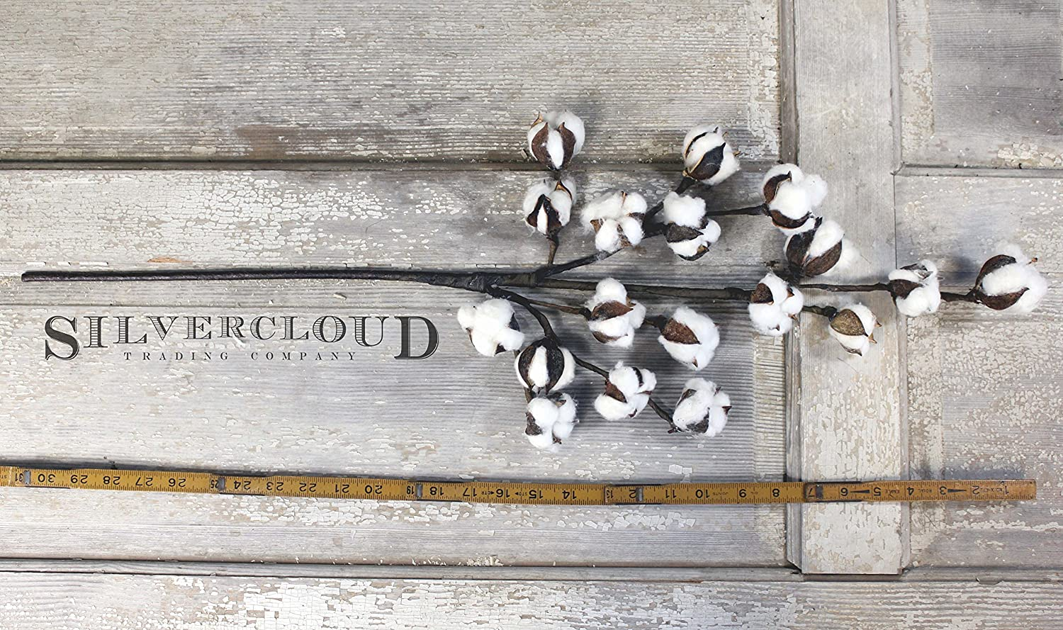 Cotton Stem 6 Stems//Pack Large 18 Cotton Buds//Stem Silvercloud Trading Co 6 Stems Farmhouse Style Cotton Stems Floral Display Filler 30 Tall