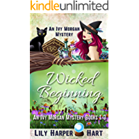 Wicked Beginning: An Ivy Morgan Mystery Books 1-3