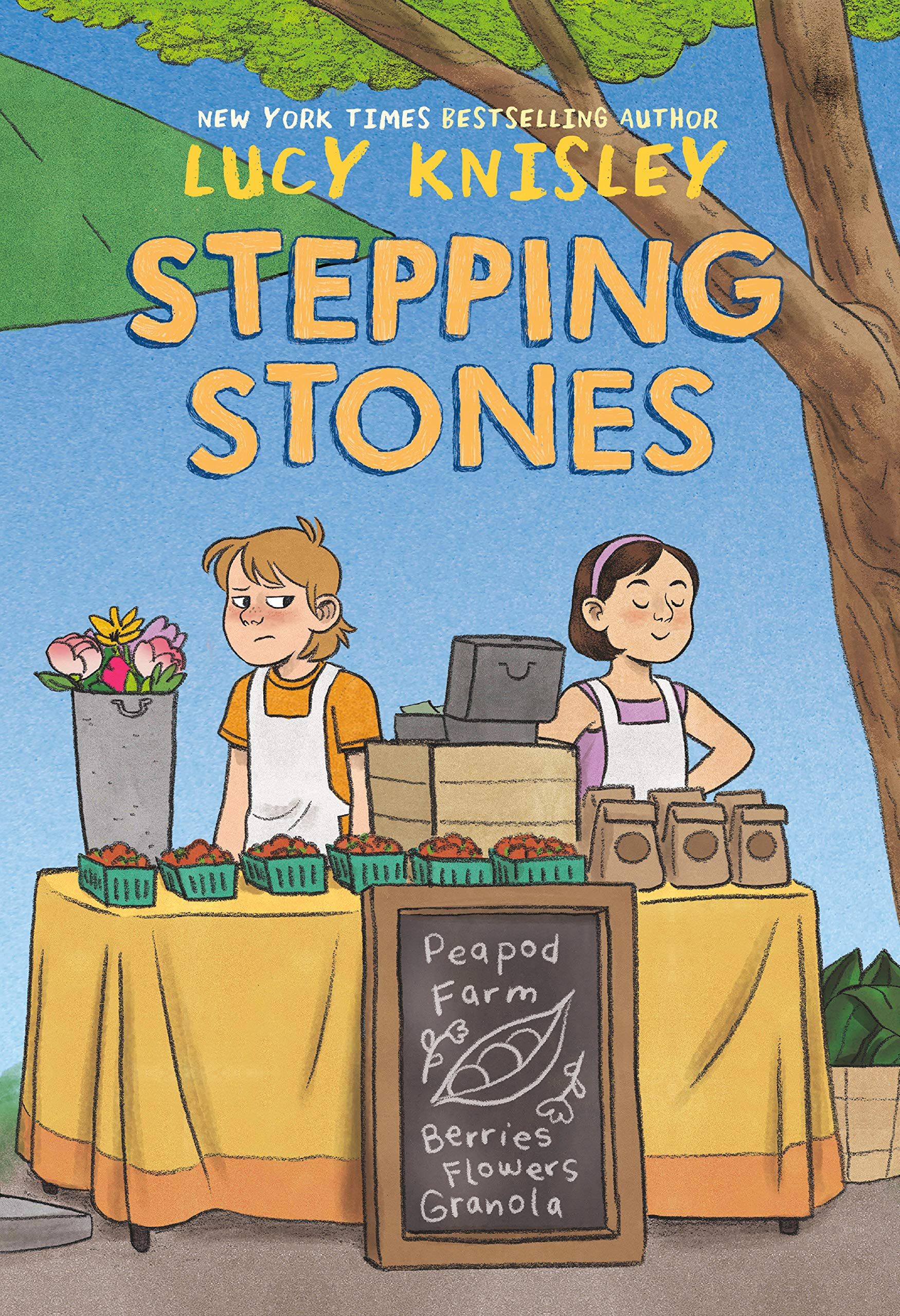 Stepping Stones (Peapod Farm): Knisley, Lucy: 9781984896858 ...