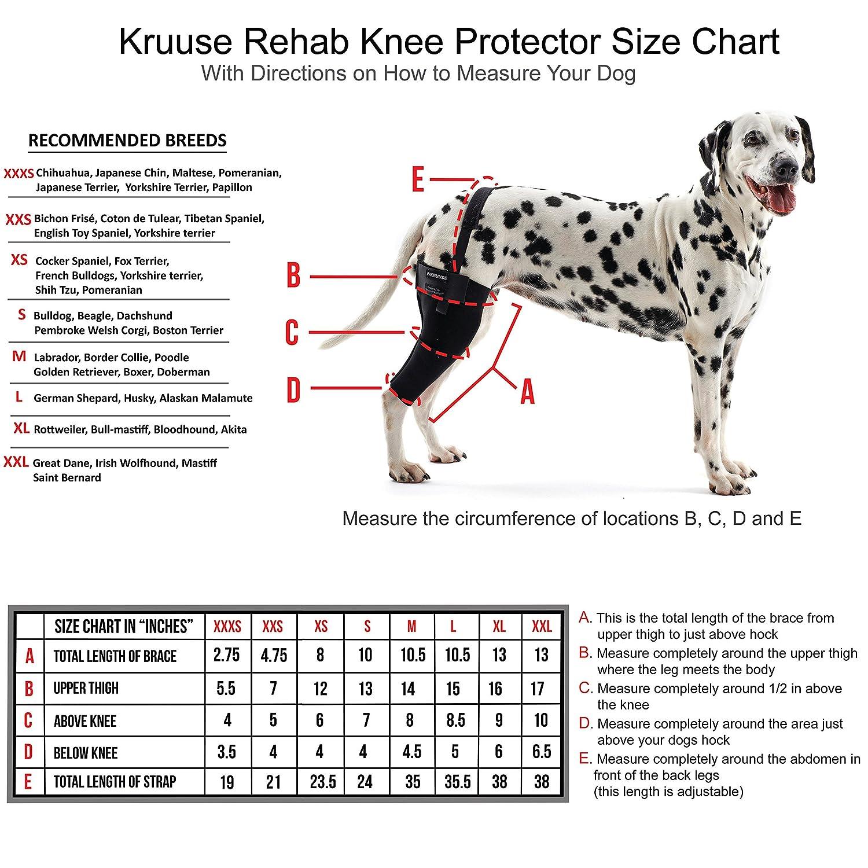 Amazon kruuse rehab right knee protector medium pet supplies nvjuhfo Choice Image