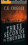 Three Seconds To Thunder: A China Bohannon Novel