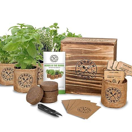 Merveilleux Indoor Herb Garden Starter Kit   Organic, Non GMO Herb Seeds   Basil Thyme  Parsley