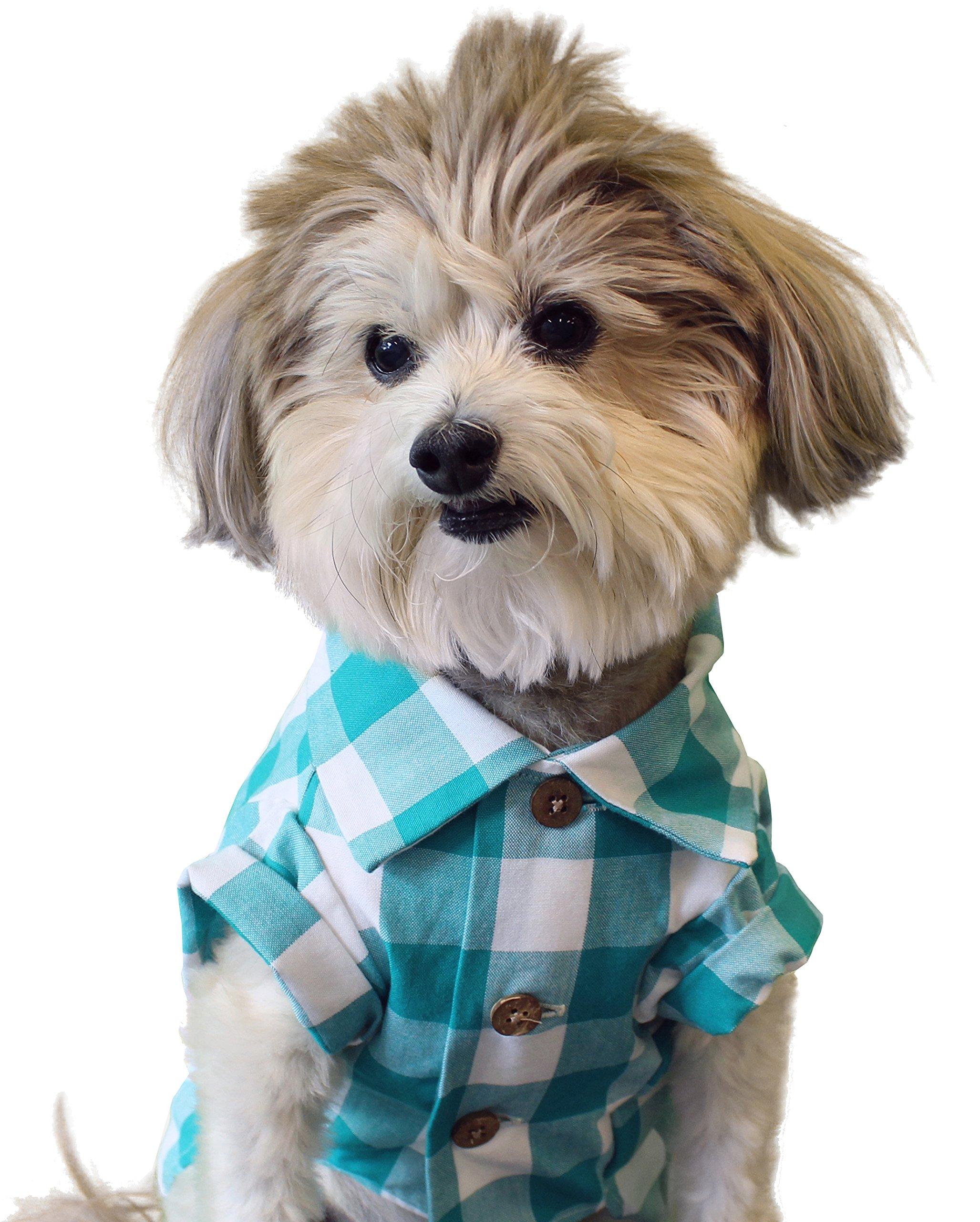 Dog Threads™ Plaid Dog Shirt by Picnic Plaid Shirt Check Plaid Button-Up Dog Shirt Teal (M (20-28lbs))