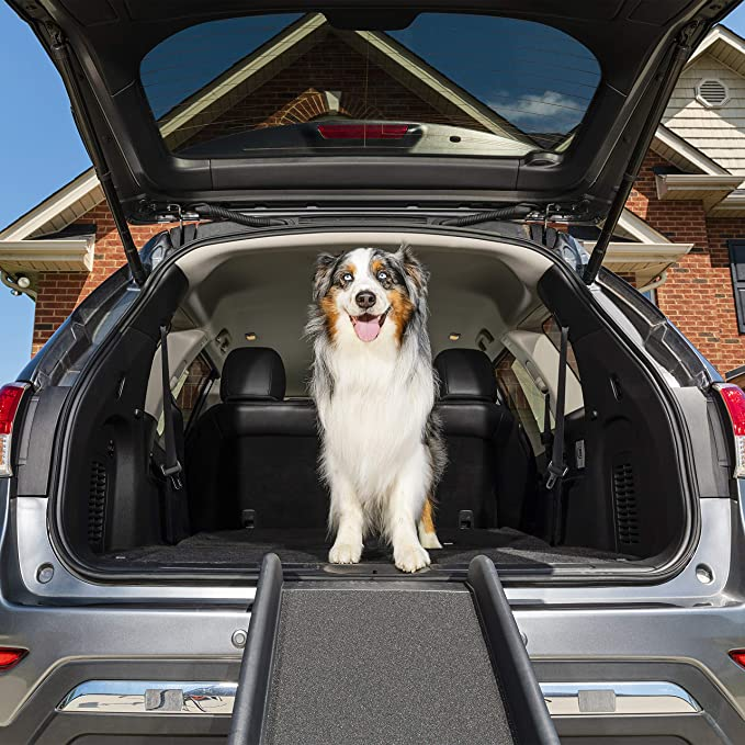 Petsafe Happy Ride Folding Pet Ramp 62 Inch Portable Lightweight Dog And Cat Ramp Great For Cars Trucks And Suvs Side Rails And High Traction Surface Pet Door