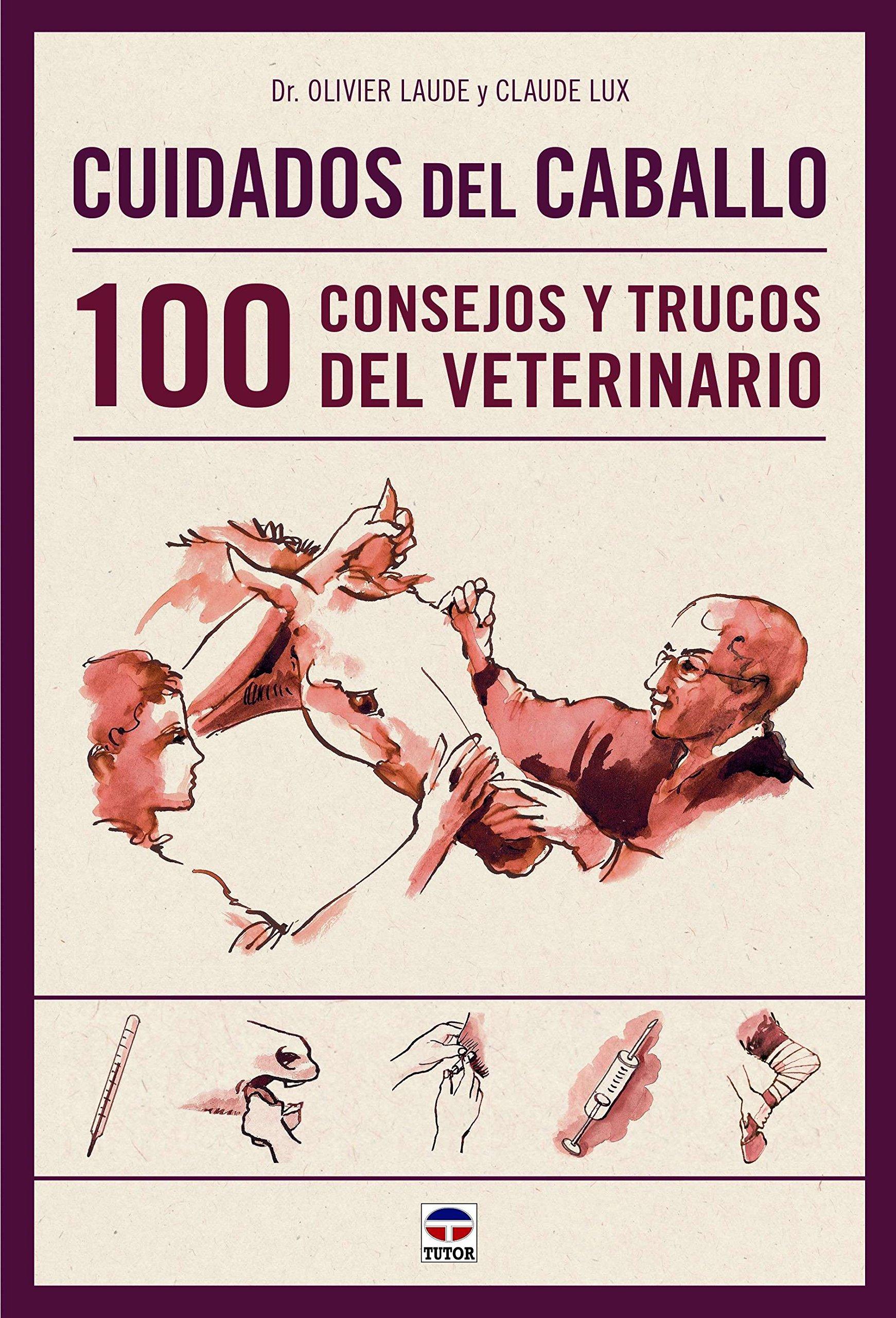Cuidados del caballo: 100 consejos y trucos del veterinario de Olivier Laude y Claude Lux