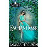 Enchantress (Witches Academy Series Book 8)