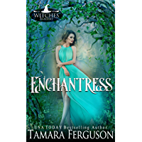 Enchantress (Witches Academy Series Book 8) (English Edition)