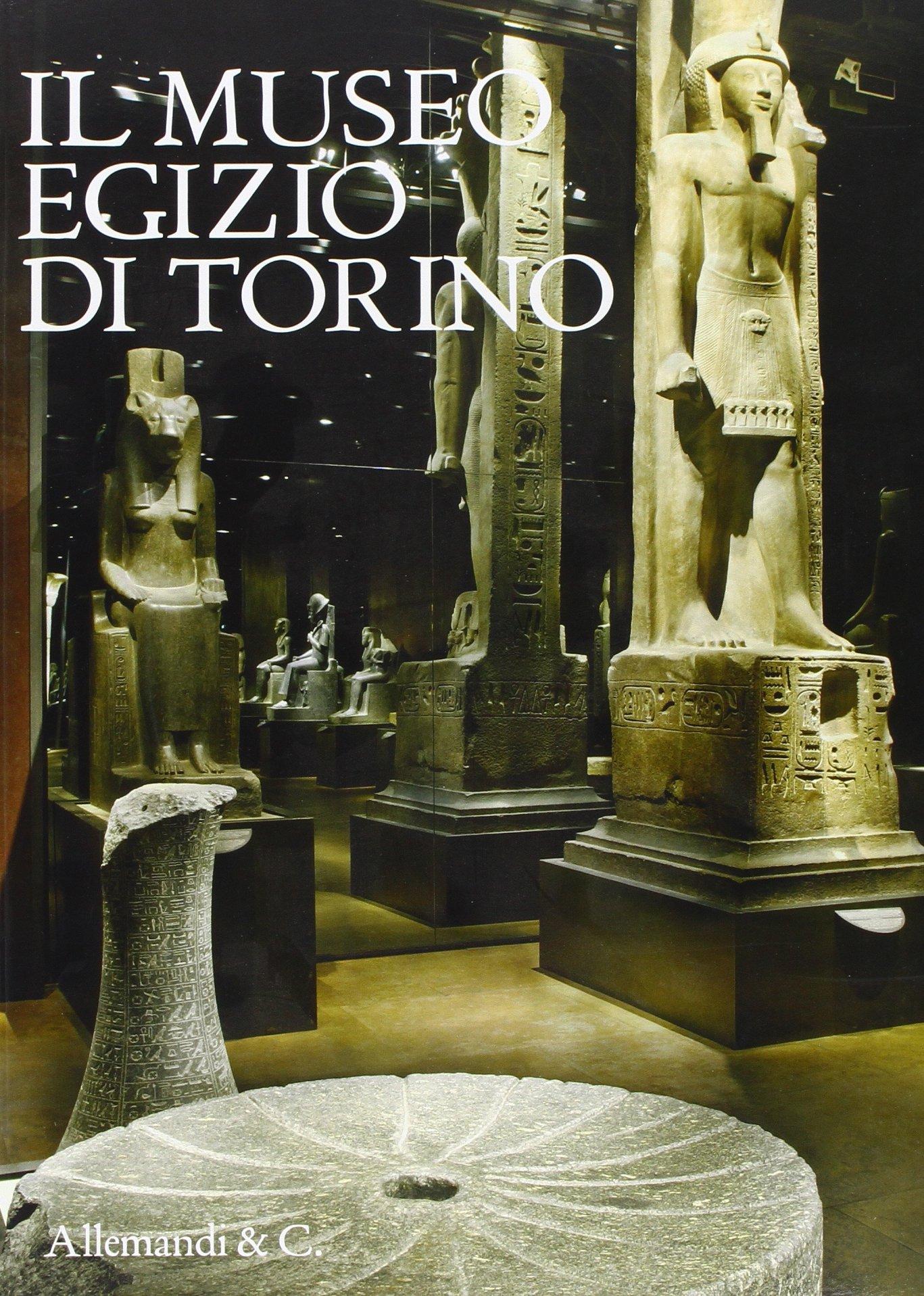 Il museo egizio di Torino. Ediz. illustrata Copertina flessibile – 1 gen 2007 Eleni Vassilika Pino Dell' Aquila Allemandi 8842214949