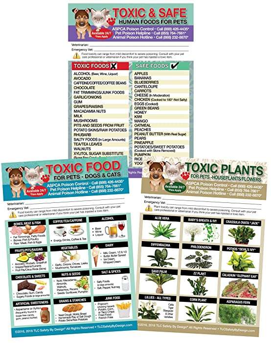 """Set of 3 Enhanced TRADEMARKED Toxic and Safe Foods, Toxic Plants and Toxic Foods Poison for Pets Dogs Cats Emergency Home Alone 5"""" x 7"""" Veterinarian Approved Refrigerator Safety Magnet"""