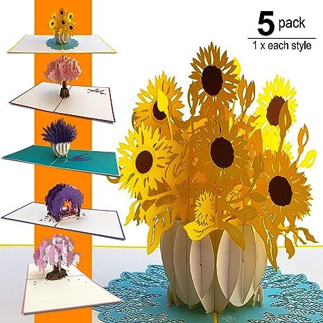 Amazon.com: NDN LINE 3D Pop Up Tarjeta de felicitación de ...
