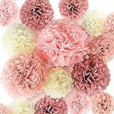 EpiqueOne 20 Pieces Blush Pink, Dusty Rose, Mauve, Cream Tissue Paper Pom Poms - Ceiling and Party Decorations - Backdrop Flo