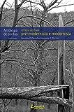 Retratos do Brasil pré-modernista e modernista: Antologia de contos