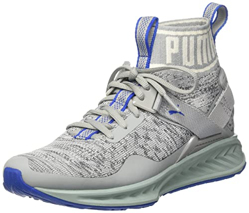 sale retailer b7f6b c51dd Puma Unisex's Ignite Evoknit Quarry, Asphalt and Lapis Blue ...