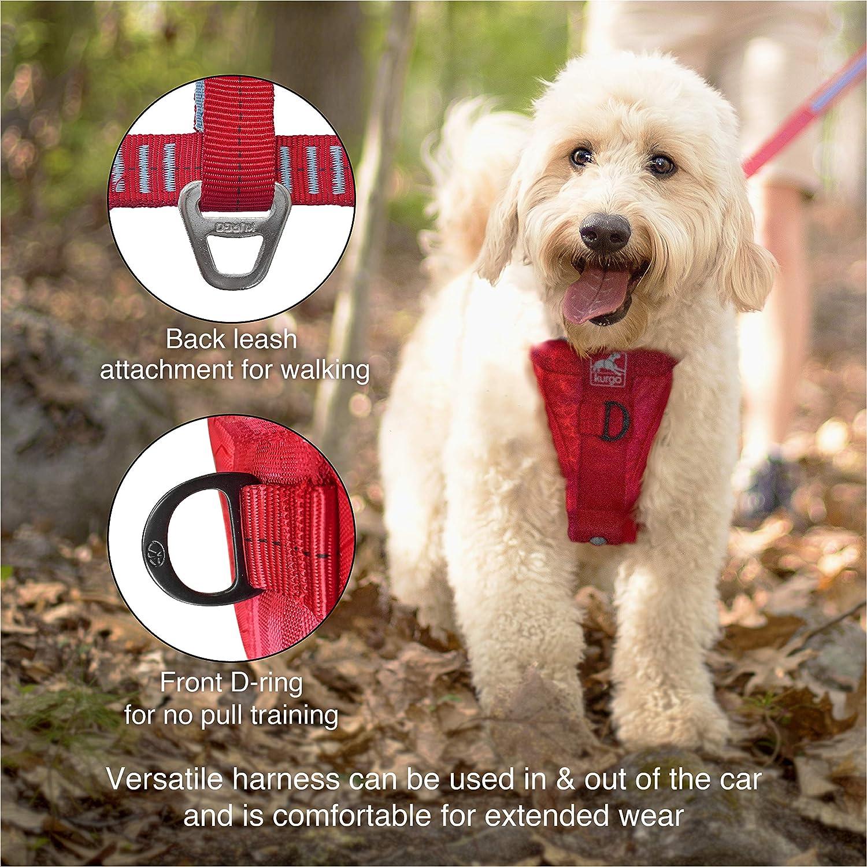 Rouge Taille: XL Kurgo Harnais de s/écurit/é pour chien Taille ajustable Syst/ème dattache sur ceinture de s/écurit/é universel avec mousqueton Enhanced Str Adapt/é pour chiens de tr/ès grande taille