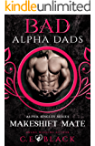 Makeshift Mate: Alpha Singles, Bad Alpha Dads (Meet Your Alpha Book 2)