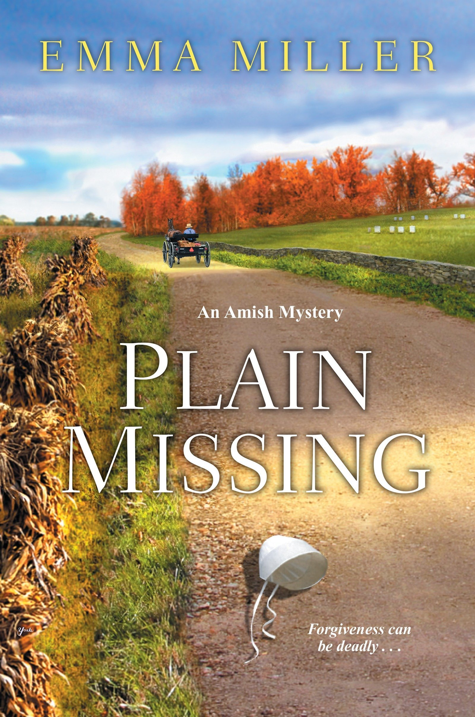 Plain Missing (A Stone Mill Amish Mystery) ebook