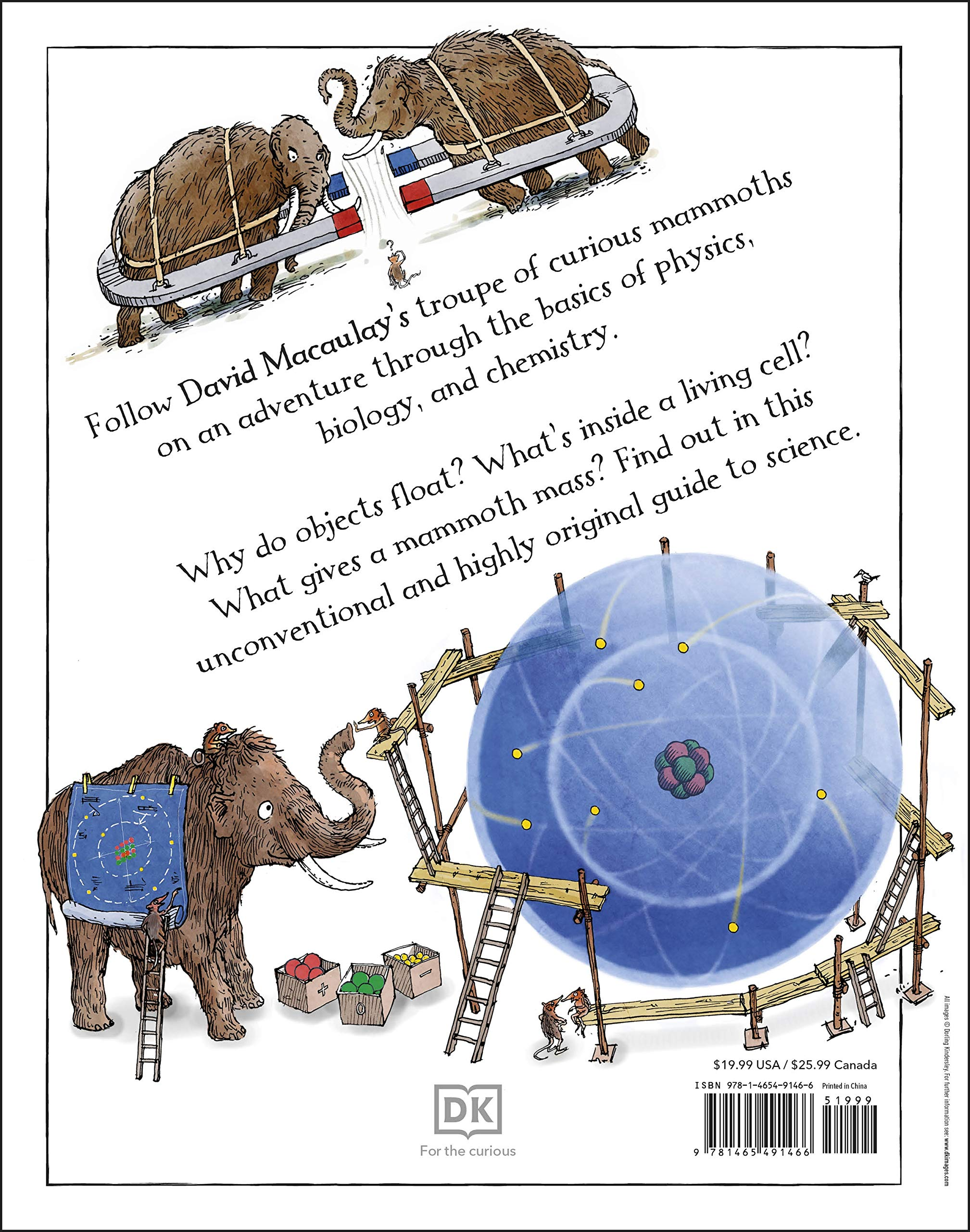 Mammoth Science: The Big Ideas That Explain Our World: DK, Macaulay, David:  9781465491466: Amazon.com: Books