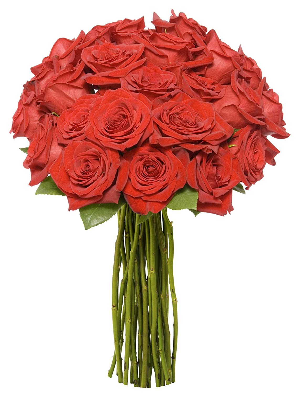 Amazon.com : Benchmark Bouquets 2 Dozen Red Roses, With Vase : Fresh ...