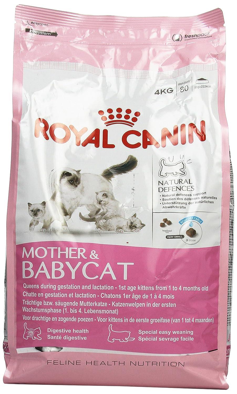 Royal Canin/Babycat sac de 2 kg croquettes pour chaton de 1 à 4 mois 03RCBC2