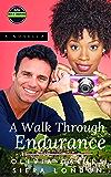 A Walk Through Endurance: (Series Intro) (The Men of Endurance Book 1)