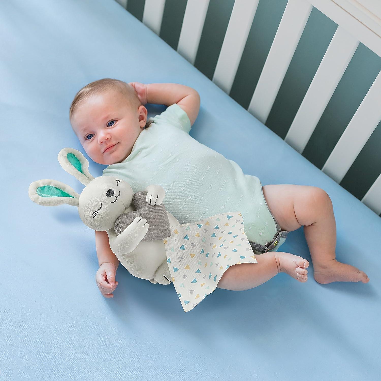 Summer Infant Little Heartbeat Soother Hedgehog