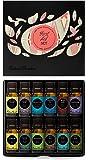 First Aid Essential Oil 12/10 ml Set- Breathe Easier, Digest Ease, Eucalyptus, Fighting Five, Head Ease, Lavender, Lemon, Muscle Relief, Peppermint, Pest Defy, Sleep Ease, Tea Tree by Edens Garden