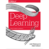 Deep Learning: A Practitioner's Approach (English Edition)
