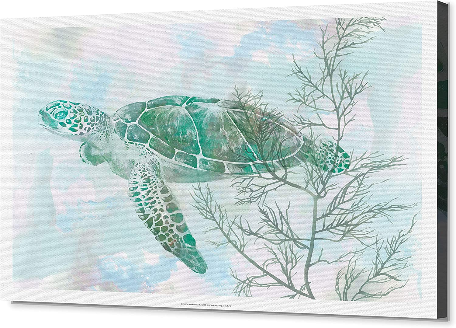 Wexford Home Watercolor Sea Turtle Ii Gallery Wrapped Canvas Wall Art 24x32 Home Kitchen