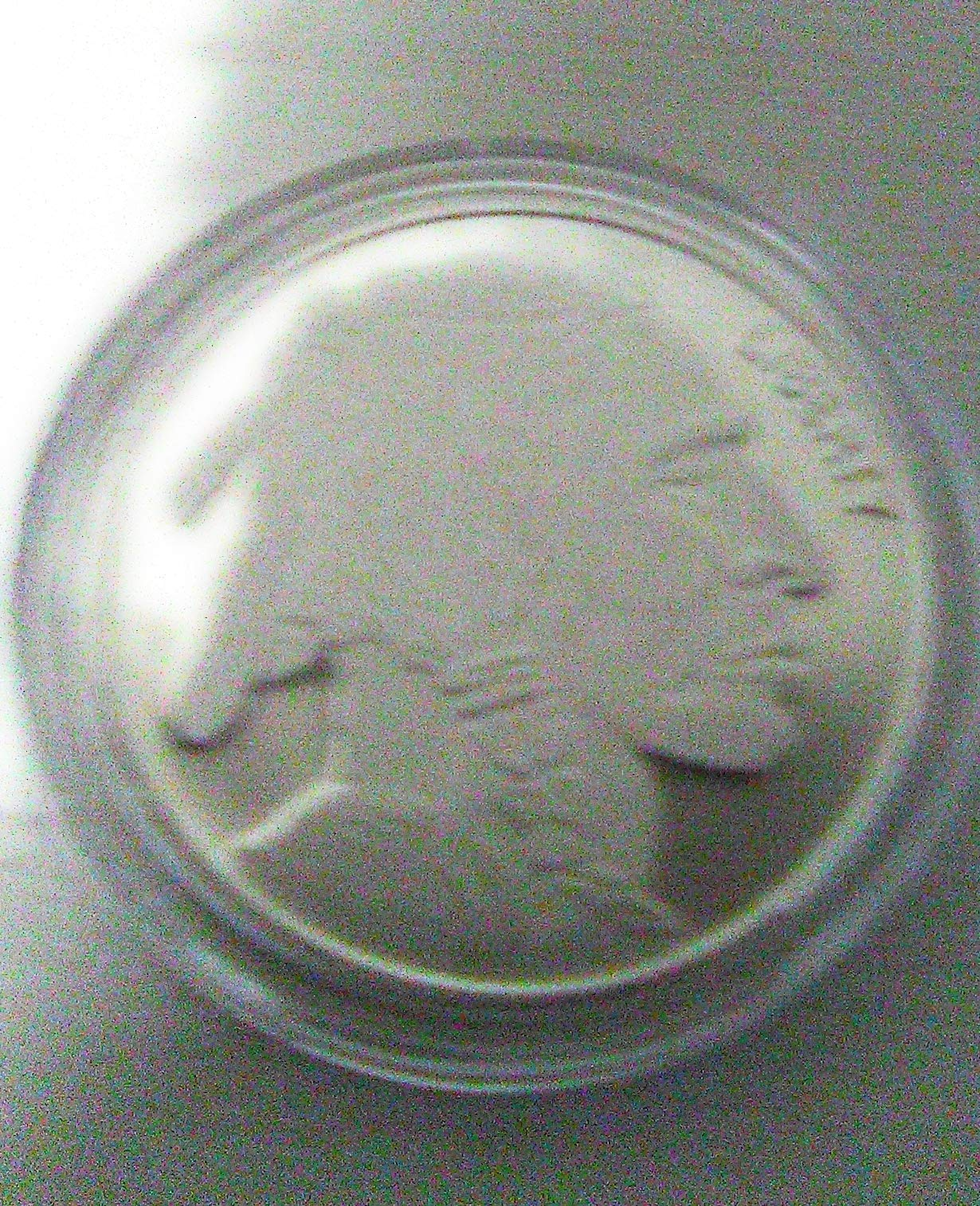 American Buffalo Fine Silver Round Sealed in Airtight .999 Fine Silver 1 Troy. Oz (31.1Gram) in Protection Air Tight