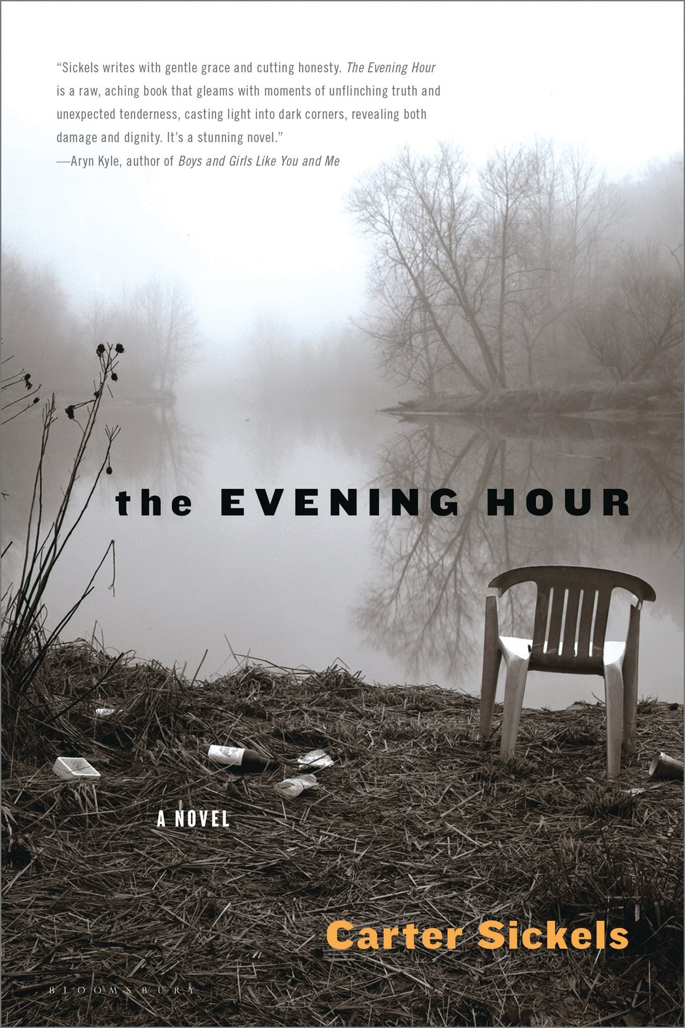 The Evening Hour: A Novel: Carter Sickels: 9781608195978: Amazon: Books