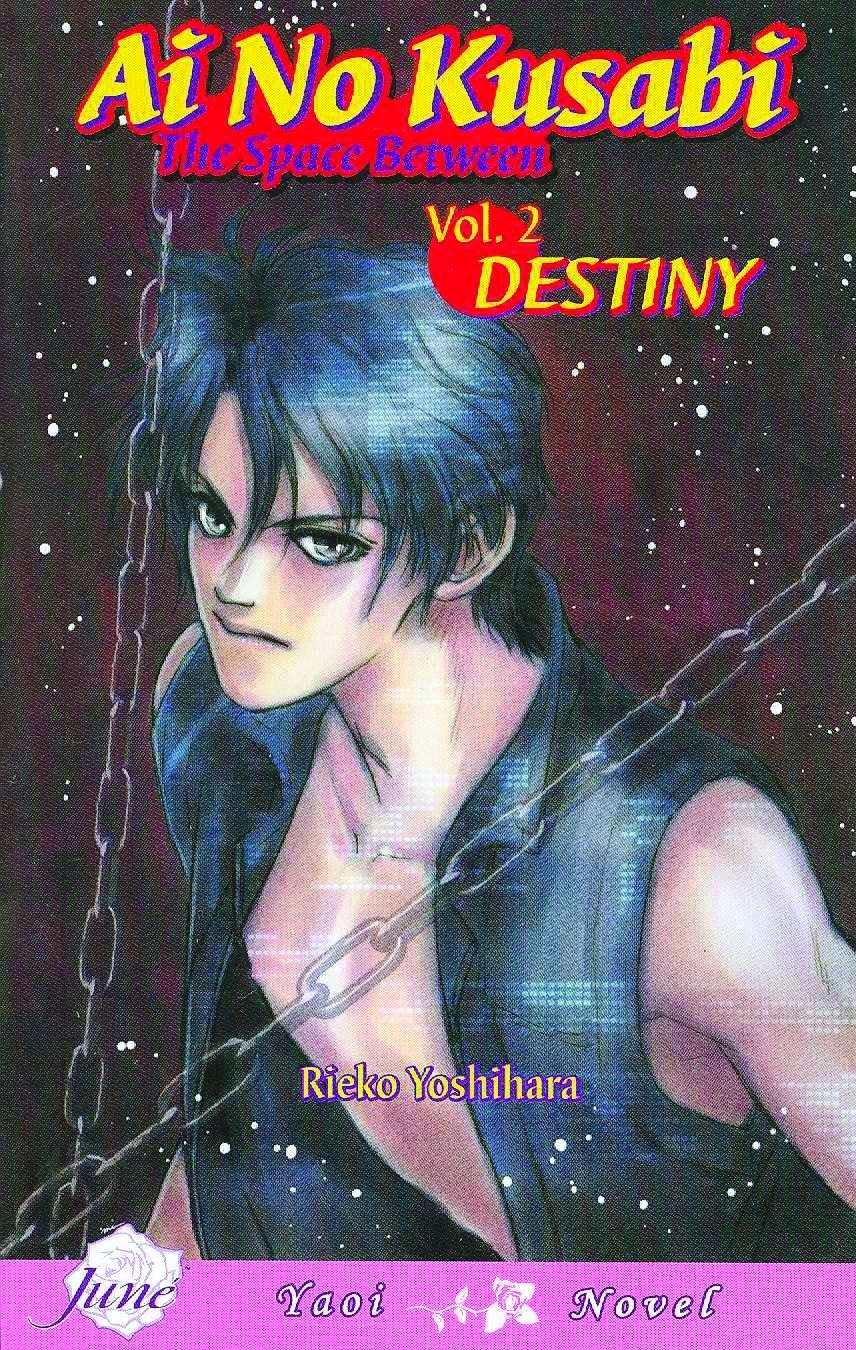 Ai no kusabi the space between volume 2 destiny yaoi novel v 2 ai no kusabi the space between volume 2 destiny yaoi novel v 2 reiko yoshihara 9781569707838 amazon books fandeluxe Gallery