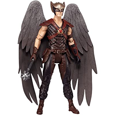 "Mattel DC Comics Multiverse Hawkman DC Legends of Tomorrow Figure, 6"": Toys & Games"