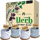 Indoor Herb Garden Starter Kit - Herb Seeds Gardening Kit Planting Pots & Potting Soil - Heirloom & Non GMO - DIY Home Seed S
