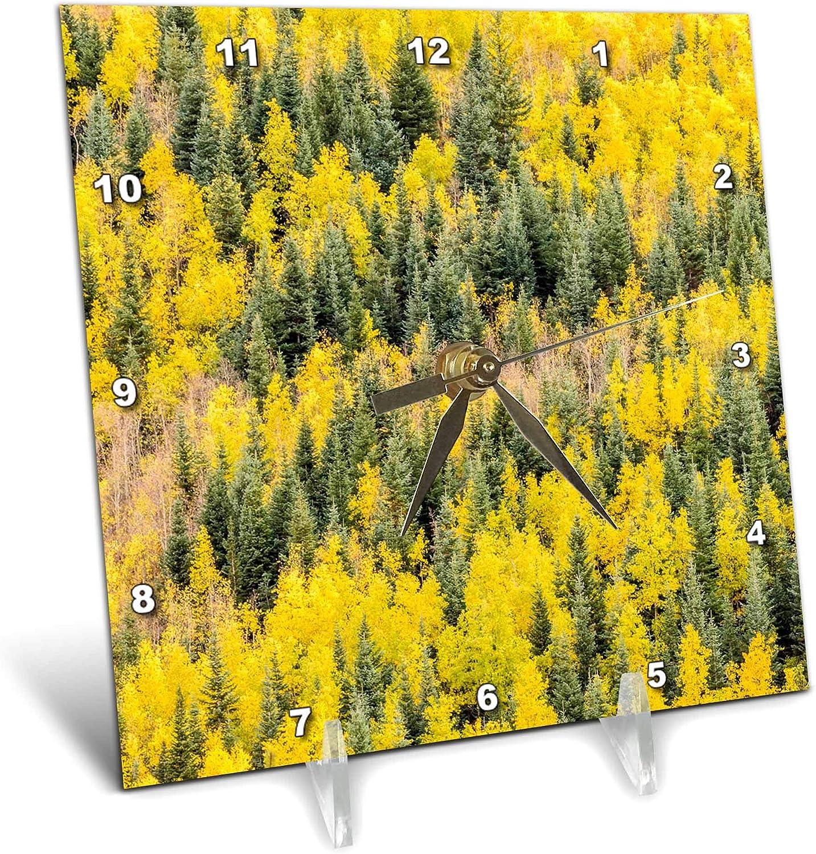 3dRose Colorado, Gunnison National Forest. Aspen Forest in Autumn. - Desk Clocks (dc_346419_1)
