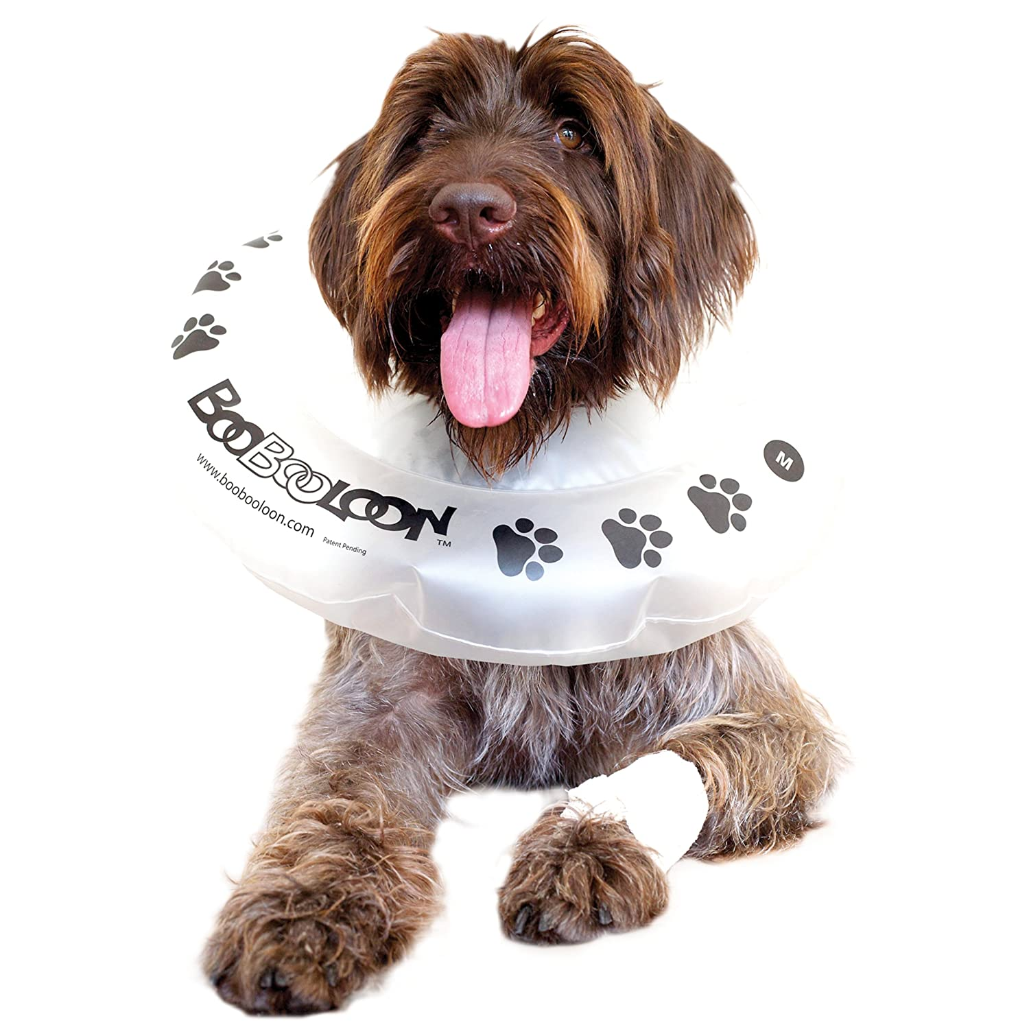 BooBooLoon Inflatable Pet Recovery Collar 1 Medium Size