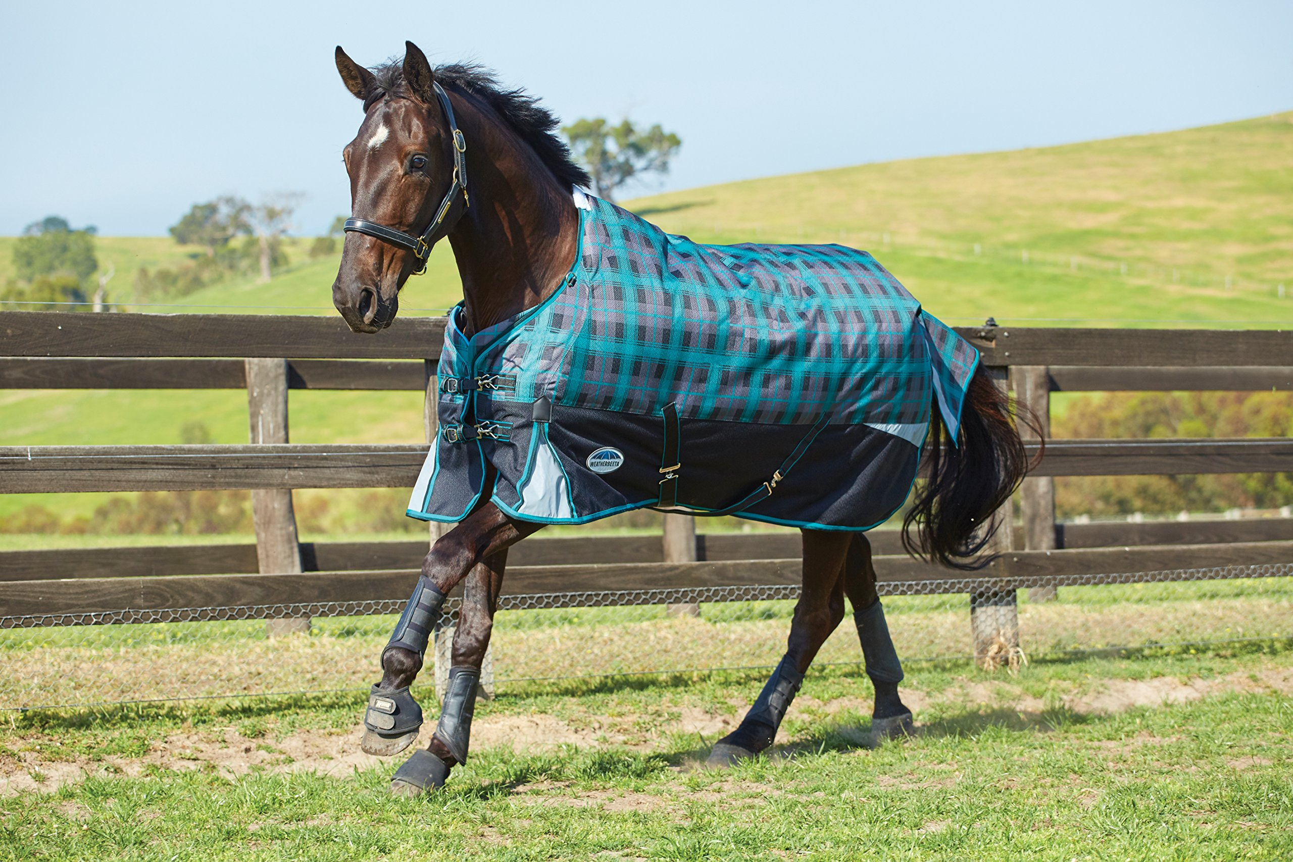 Weatherbeeta Freestyle 1200D Standard Neck Heavy Weight Turnout (81'', Black/Teal Plaid)