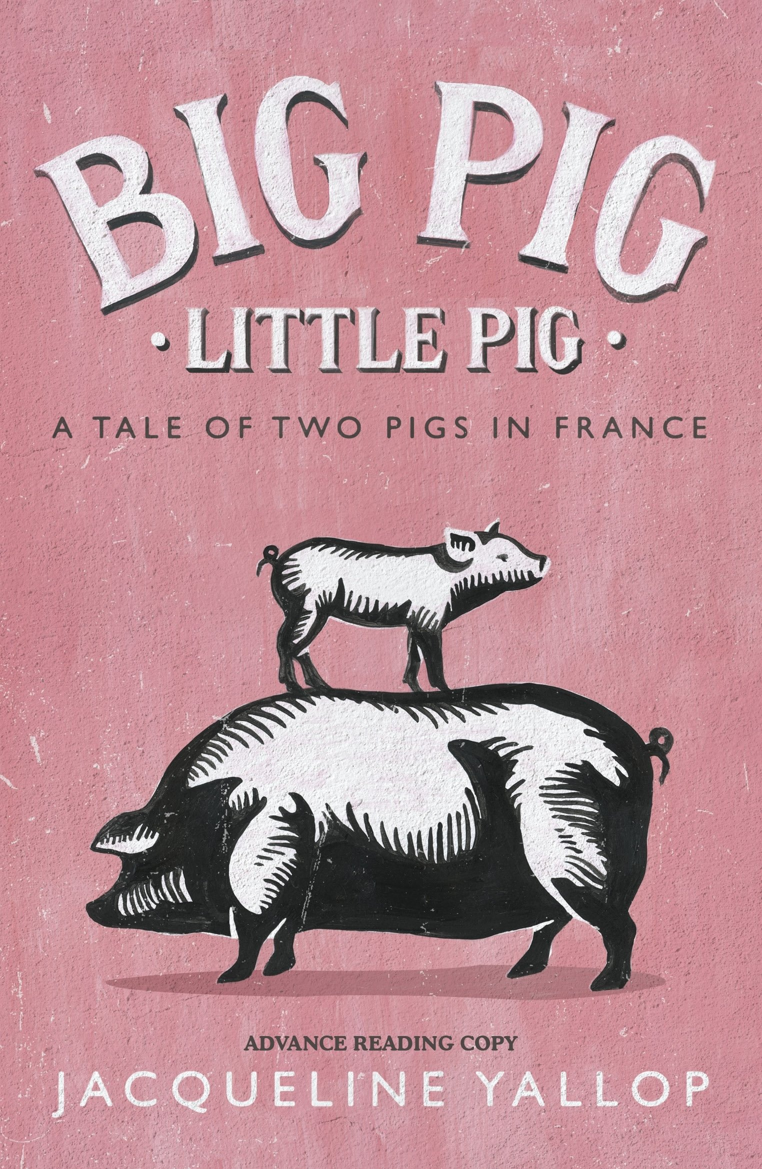 Big Pig Little A Tale Of Two Pigs In France Jacqueline Yallop 9780241261415 Amazon Books