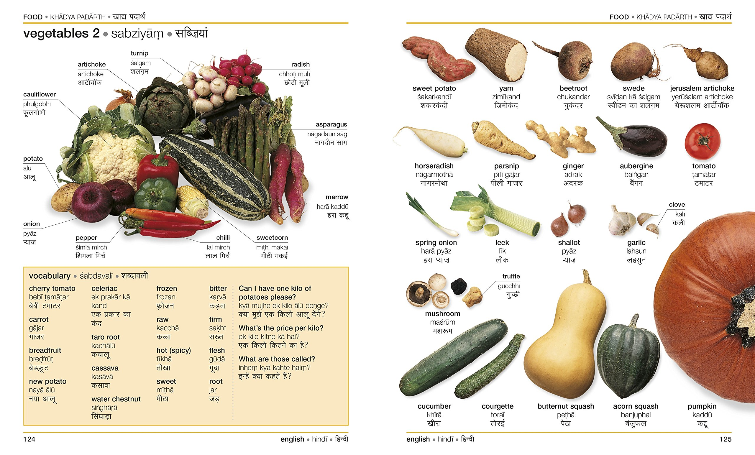 Buy Hindi English Bilingual Visual Dictionary (DK Bilingual