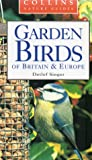 Garden Birds of Britain & Europe (Collins Nature Guides)