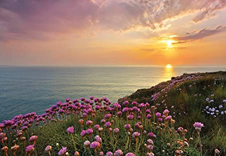 Komar 8 901 368 X 254 CmquotLands End Cornwall Scenicquot Wallpaper Mural