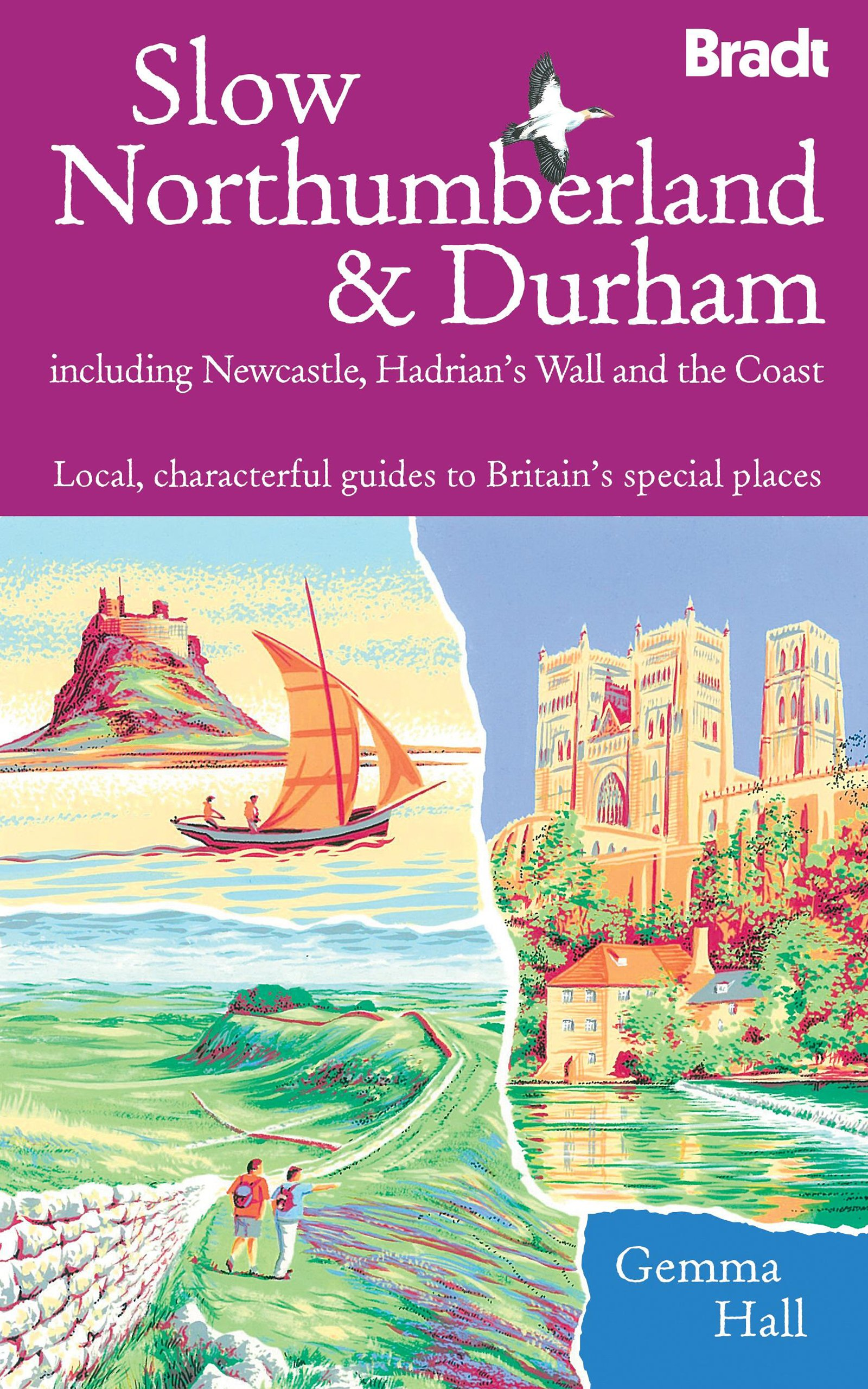 Download Slow Northumberland & Durham: Including Newcastle, Hadrian's Wall and the Coast (Bradt Slow Travel) pdf