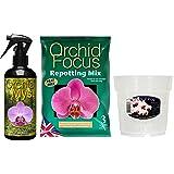 Orchid Myst 300 ml, tutte con orchidee, 3-Vaso trasparente per orchidea, 15 cm, colore: orchidea Kit
