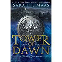 Tower of Dawn (Throne of Glass Book 6) book cover