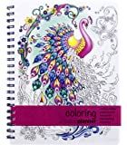 Action Publishing Undated Coloring Day Planner (8.5 x 11 inches) Large - Weekly & Monthly Organizer, Appointment Schedule, Goals and Notes