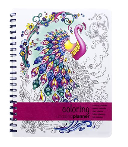 Amazon.com : Action Publishing Undated Coloring Day Planner (8.5 x ...