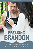 Breaking Brandon (Fate Book 2)